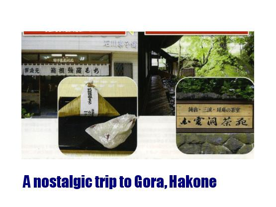 A nostalgic trip to the old-time shopping street of Gora, Hakone (sample tour)